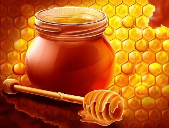 تجربتي مع عسل الطلح أفضل أنواع العسل في السعودية