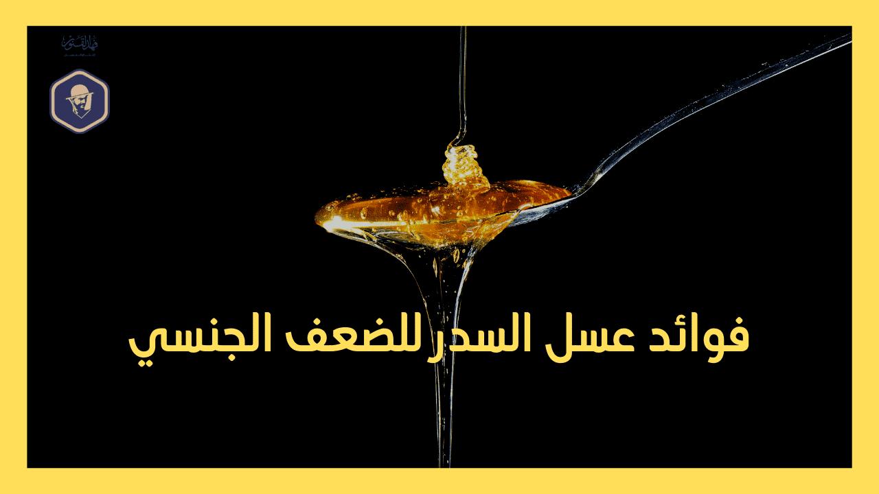 فوائد عسل السدر الجبلي للنساء - فوائد عسل السدر الجبلي للرجال