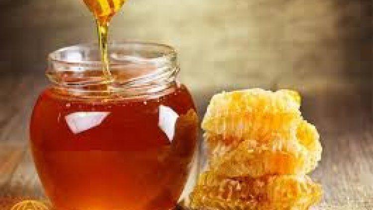 فوائد عسل السدر الجبلي للرجال