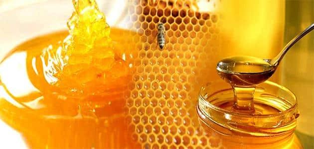 السعرات الحرارية في عسل السدر