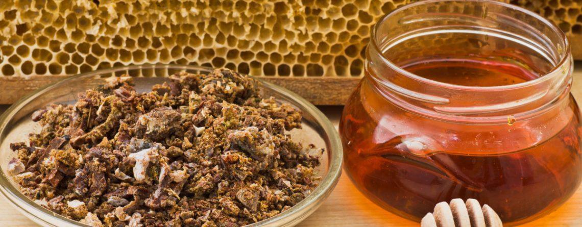 مين جربت العسل وطلع النخل وحملت