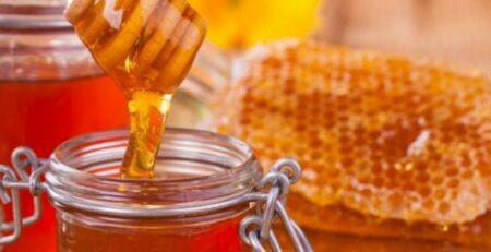 أفضل نوع عسل للمعدة