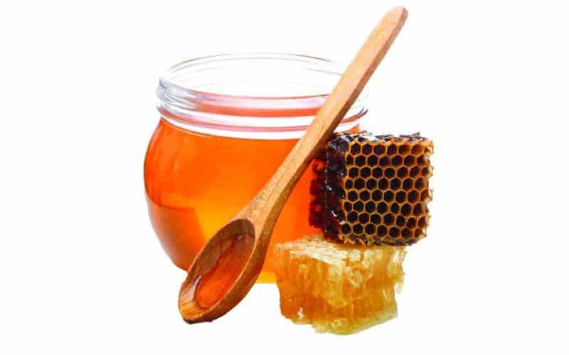 فوائد العسل على السرة للمبايض