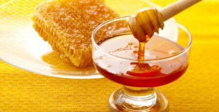ما هو الفرق بين عسل الطلح والسدر