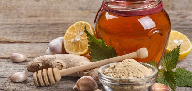 فوائد الزنجبيل المطحون مع العسل